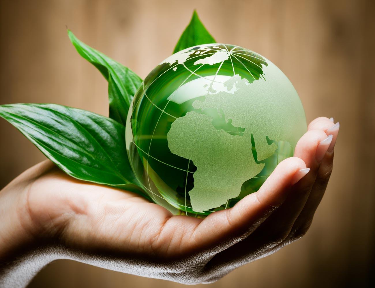 Sviluppato nuovo e versatile compound termoplastico biobased e biodegradabile